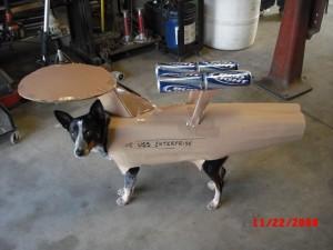 chien déguisé star trek