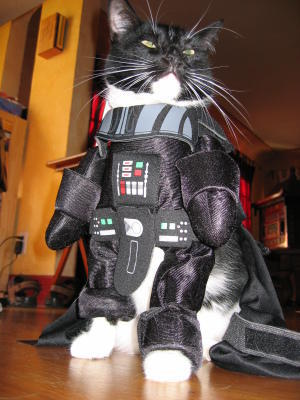 chat-star-wars