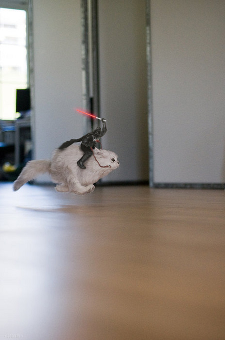chat-star-wars3