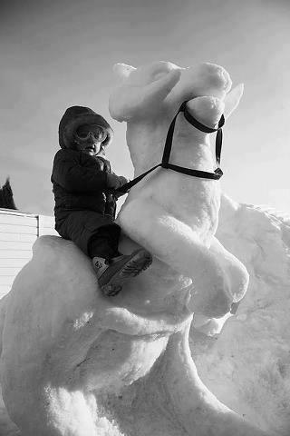 glace-sculpture41