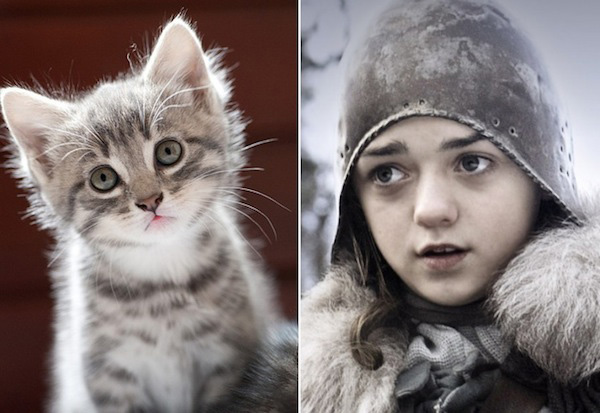 game-of-thrones-chat11