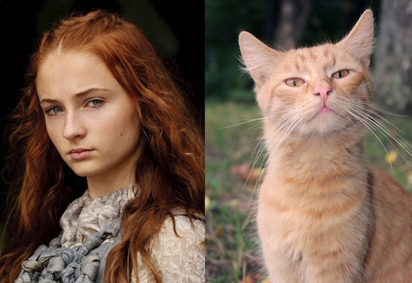 game-of-thrones-chat12