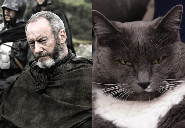 game-of-thrones-chat2
