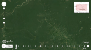 deforestation-amazonie-google