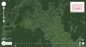 deforestation-amazonie-google1