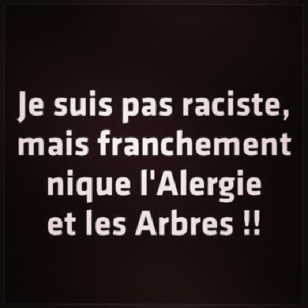 humour-allergie-arbre