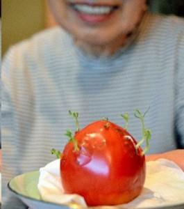 fruit-radiation