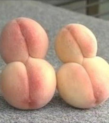 fruit-radiation-4