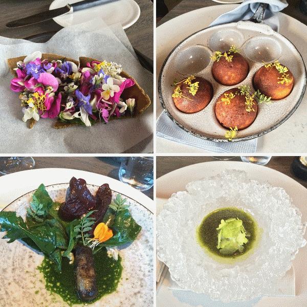 repas-restaurant-noma-photo